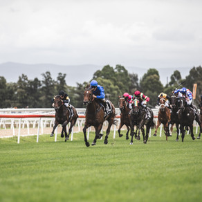 GROUP 1 TRAINERS WITH POPULAR HAWKESBURY PICKS