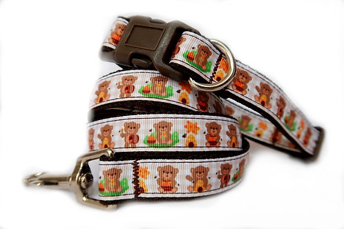 Honey Bear Dog Collar & Lead