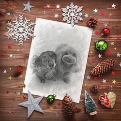 冬のプレゼントお写真の一例
