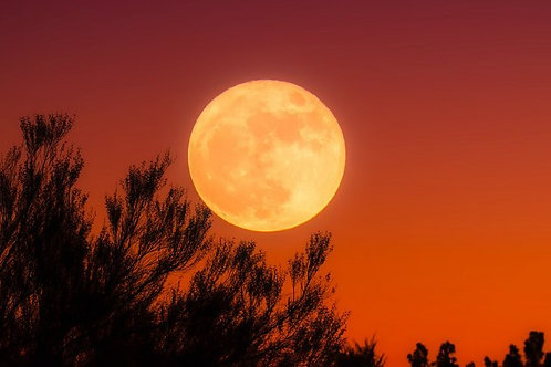 Harvest Full Moon Class