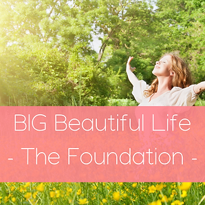 BIG Beautiful Life -The Foundation