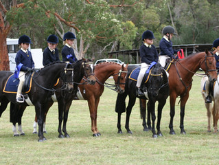 Castle Hill Show Pony Club Classes - Entries Open