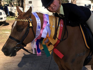 2016 Zone 26 Show Riding and Dressage Competitions