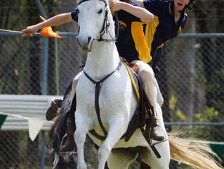 Zone 26 Team Sporting & Mounted Games
