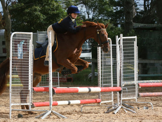 Reminder to RSVP for Showjumping Clinic this Rally Day