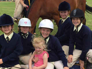 Castle Hill Show Pony Club Classes Entries Open