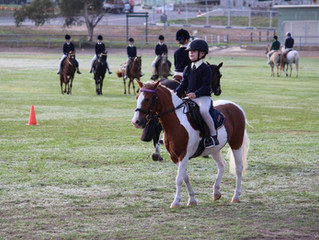 2018 Closed Show Riding - update