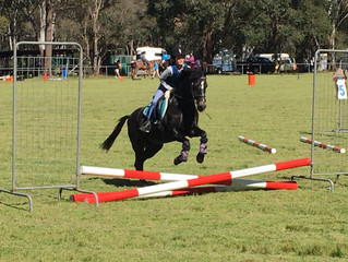 Zone 26 Show Jumping & Equitation
