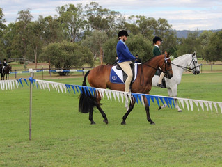Zone 26 Dressage - Entries extended to 15 March