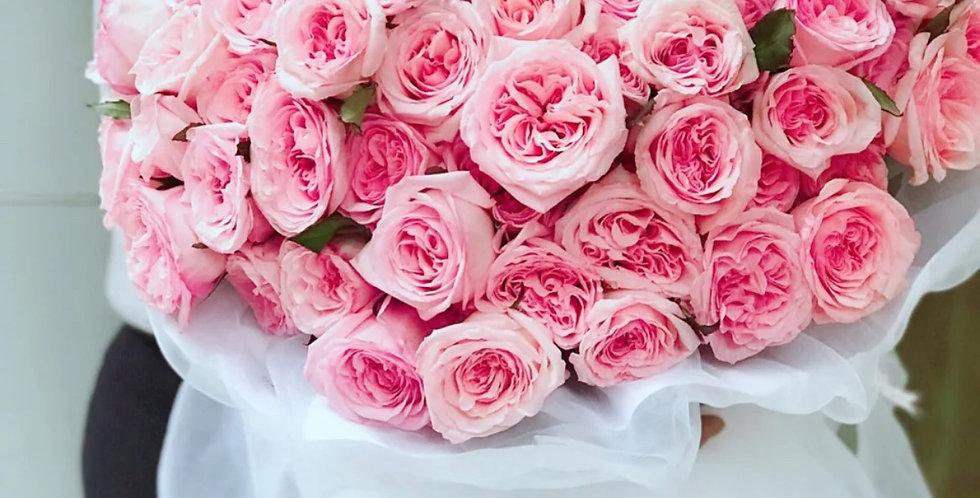99枝玫瑰 肯雅玫瑰 求婚花