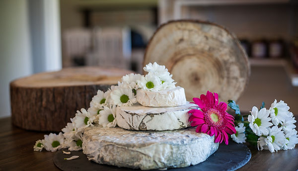 Gourmet Greek Classic White Cheese Cake.jpg