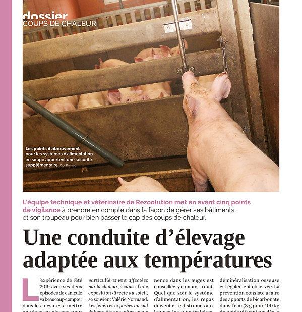 Reussir porc mai 2020.jpg