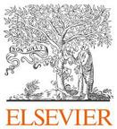 Elsevier journal.jpg