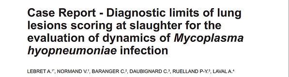 Lebret et al., 2013 - Mhyop at slaughter