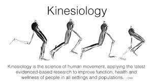 I'm a Kinesiologist