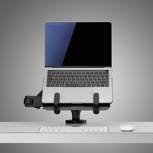 Ollin Tablet and Laptop Mount