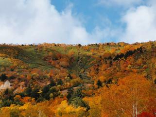 今や観光名所にもなっている岩手県八幡平市「旧松尾鉱山跡地」と八幡平秋の紅葉。