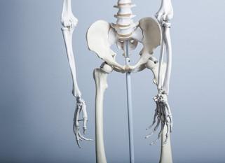 どんな症状でも骨盤のゆがみ、そんなバカなことはありません!