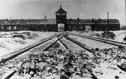 Visite du camp d'Auschwitz