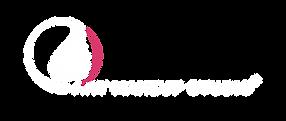 Logo blanc_AMS_Sans fond.png