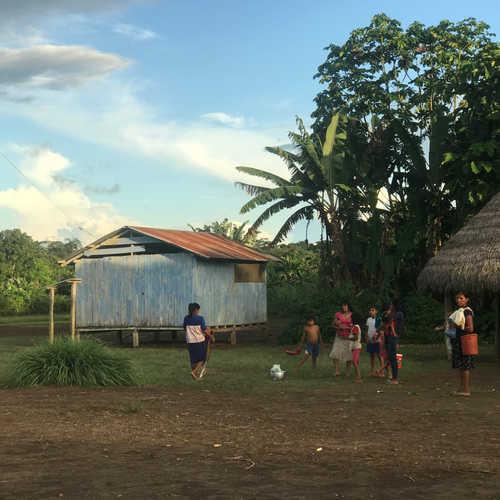 An Achuar village.
