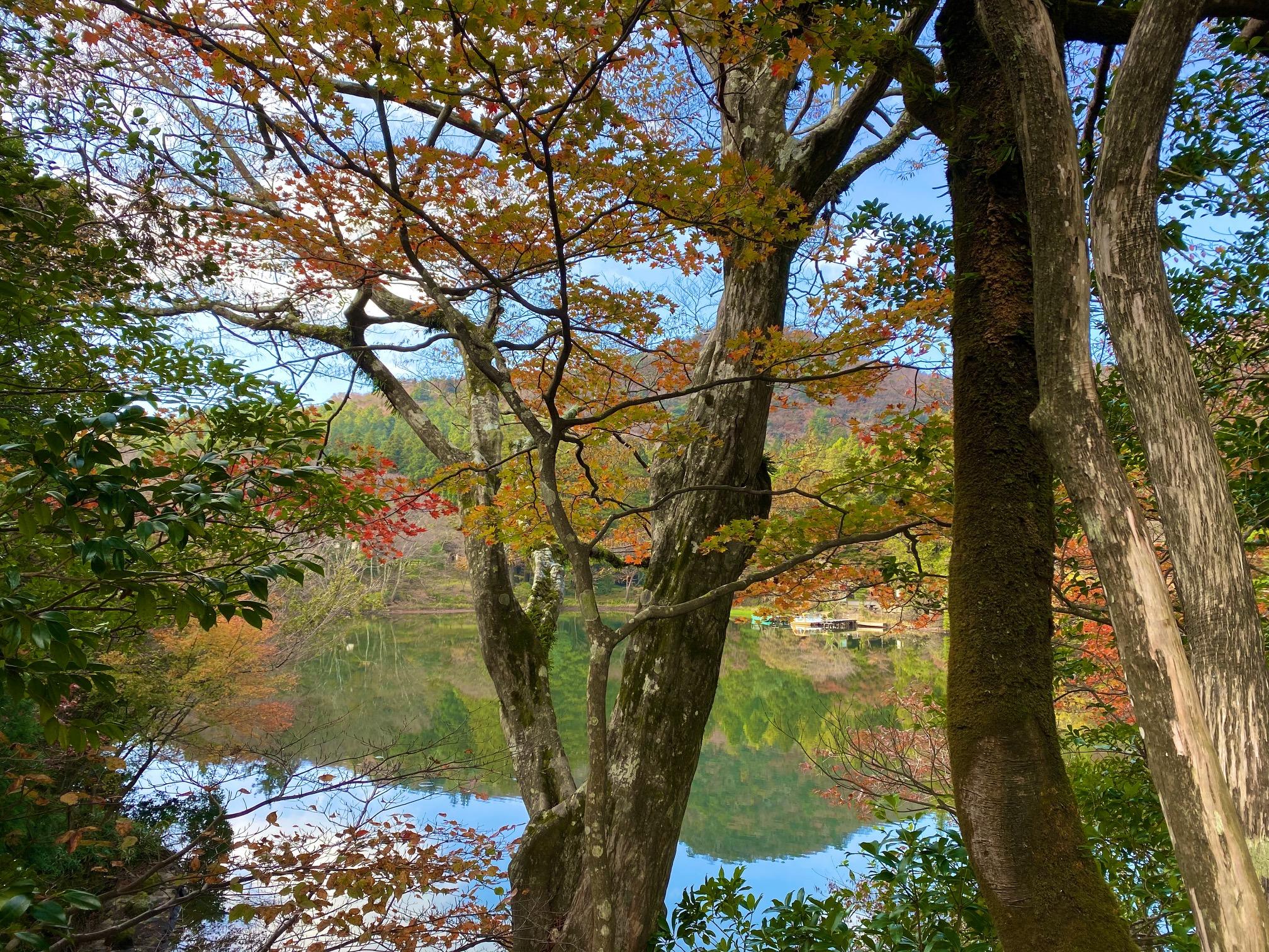 2019.11.12 Shirakumo Pond
