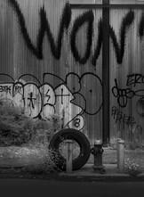 Tire Hydrant, East Williamsburg, New York