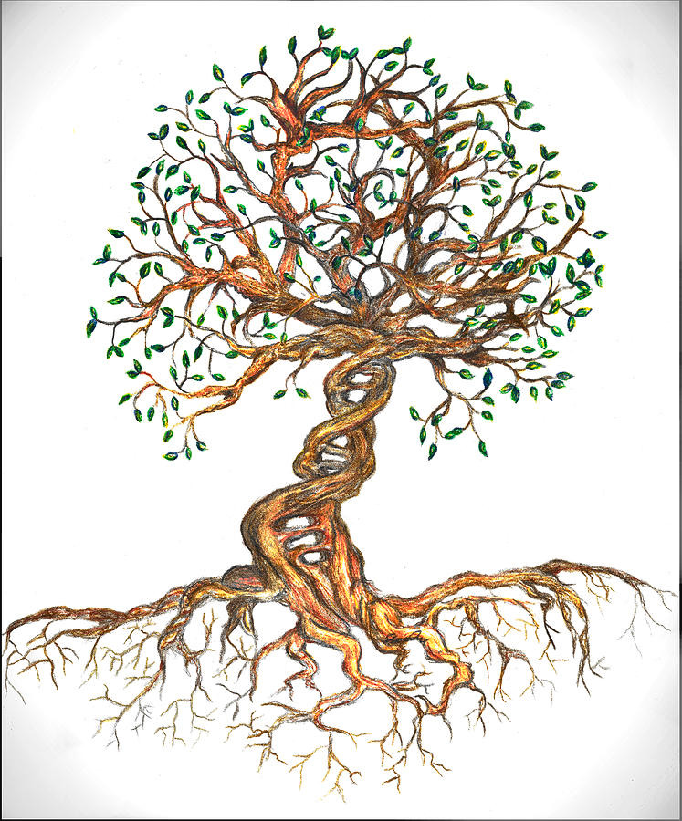 Time relative to consciousness, We are all one being and existence, the 4th dimension explained in simple terms, the tree of life with time, osmosis jones and cells as sentient beings