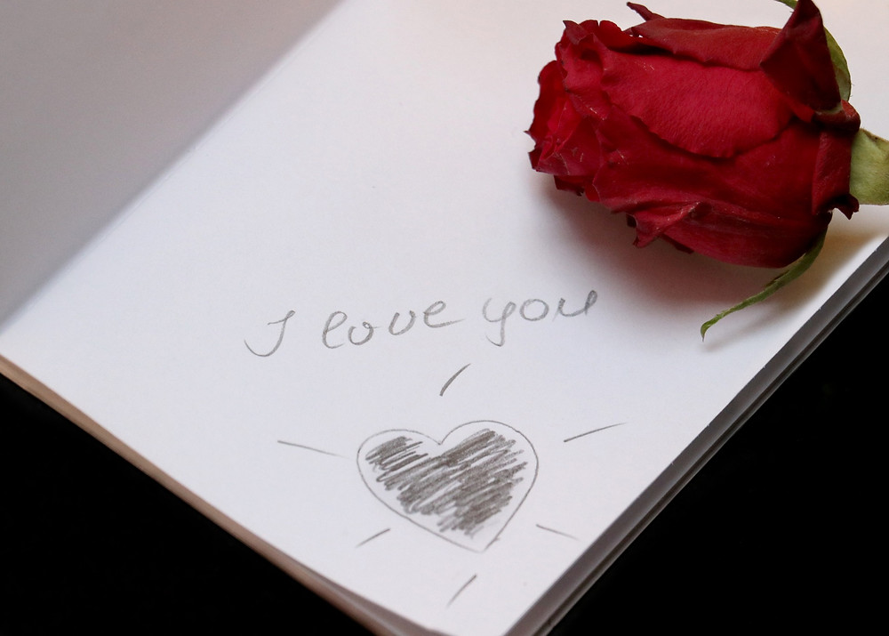 letter to make peace with your parents, best letter to write for your parents, how to tell your parents off, i hate my family, i hate my mom and dad