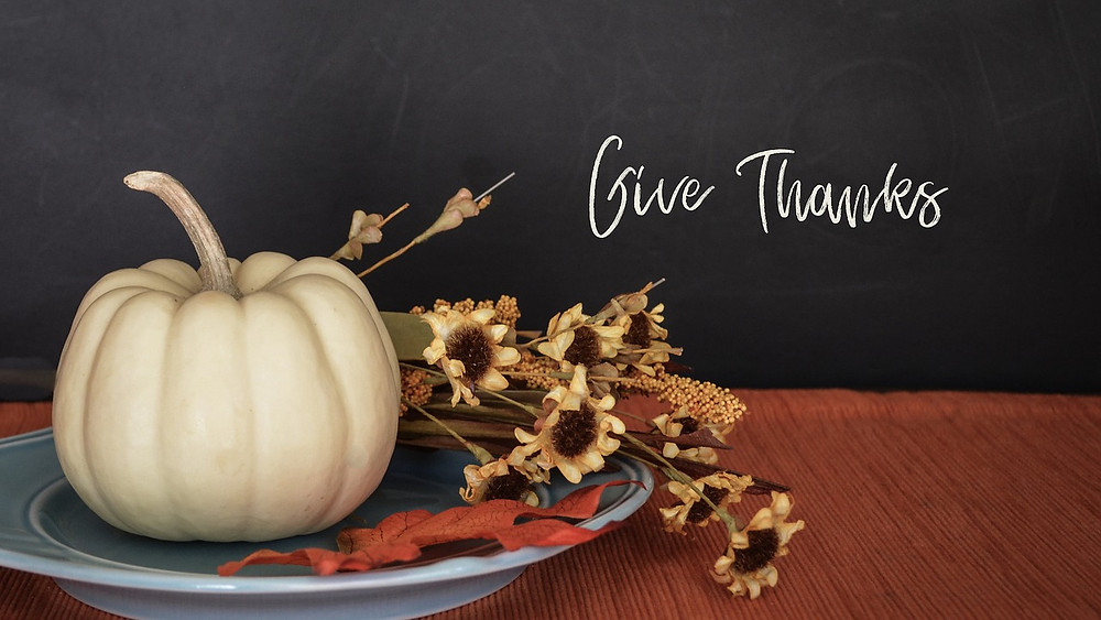 Thanksgiving 2020, Why should I be thankful?, How to appreciate the small things, ambition kills gratitude, how to be thankful