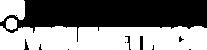visumetrics-icon-text-vit.png