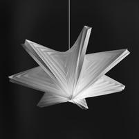 SeaStar, 2013