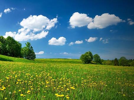 Post Brexit: Environmental Land Management Scheme (ELMS)
