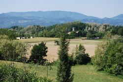 vista 1.jpg