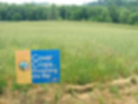 Image of a field planted with cover crop, includes a Cover Crops sign; cover crops; vegetative BMP