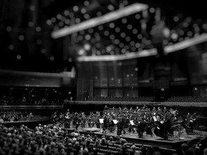 Chief data scientist as a conductor