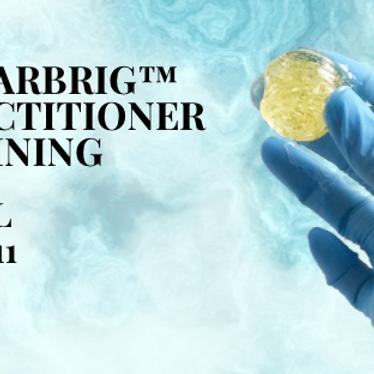 SugarBrig Practitioner Training APRIL