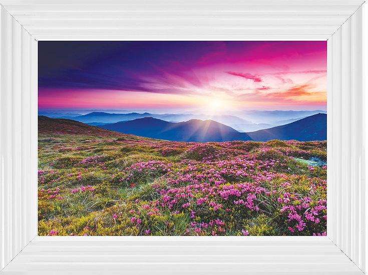 Pink wild mountain flowers