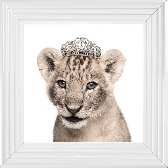 Princess Cub