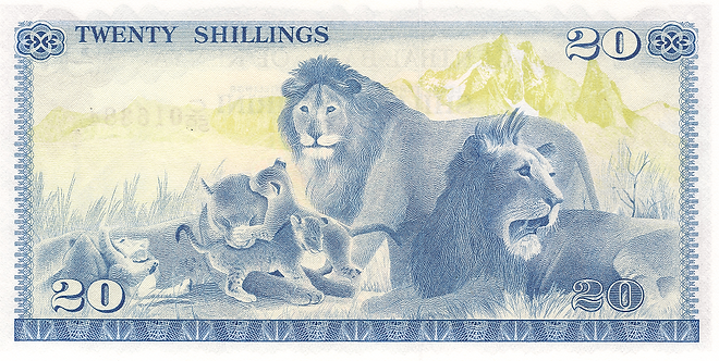 Family of Lions. Animals such as lions are a Mainstay of Children's Books