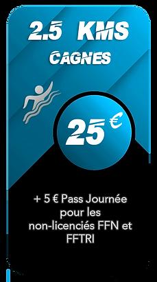 Prix Cagnes 2.5kms.png