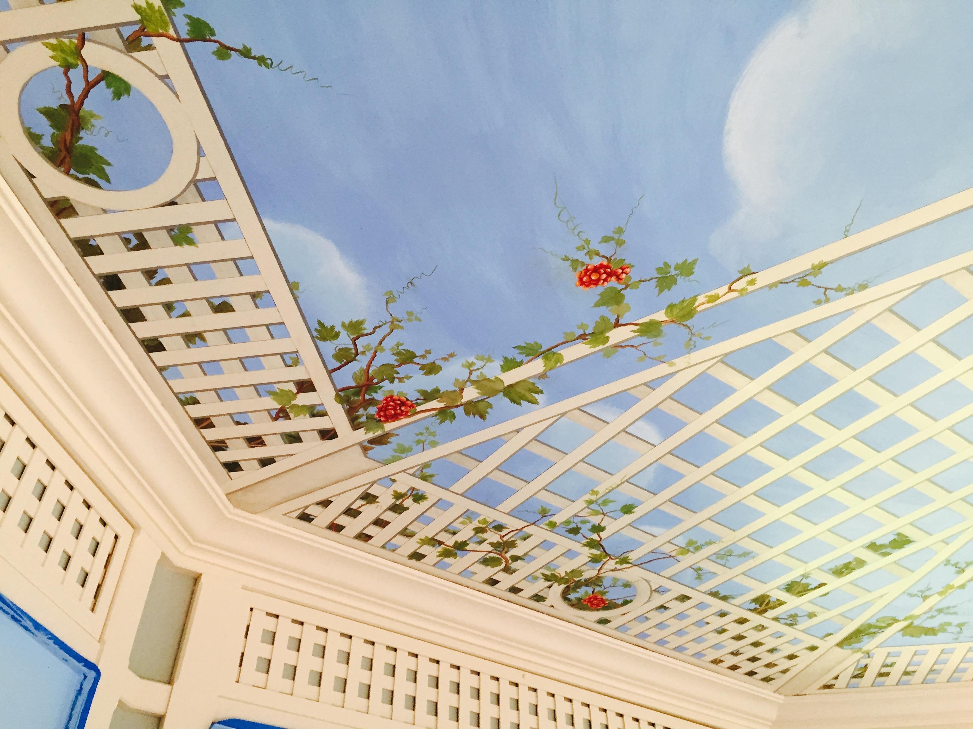 Mural Ceiling Design Hohokus NJ