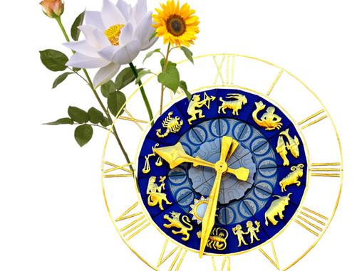 Flower Zodiac