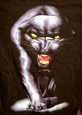 John_LeFlock_black_panther.jpg