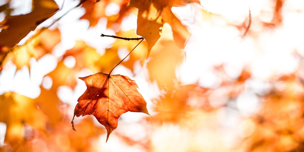 """Themenabend """"Gut gelaunt in den Herbst und Winter"""""""