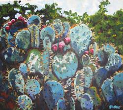Patti's Cacti 24x33