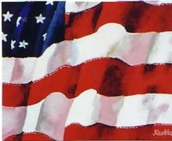 America 36x48