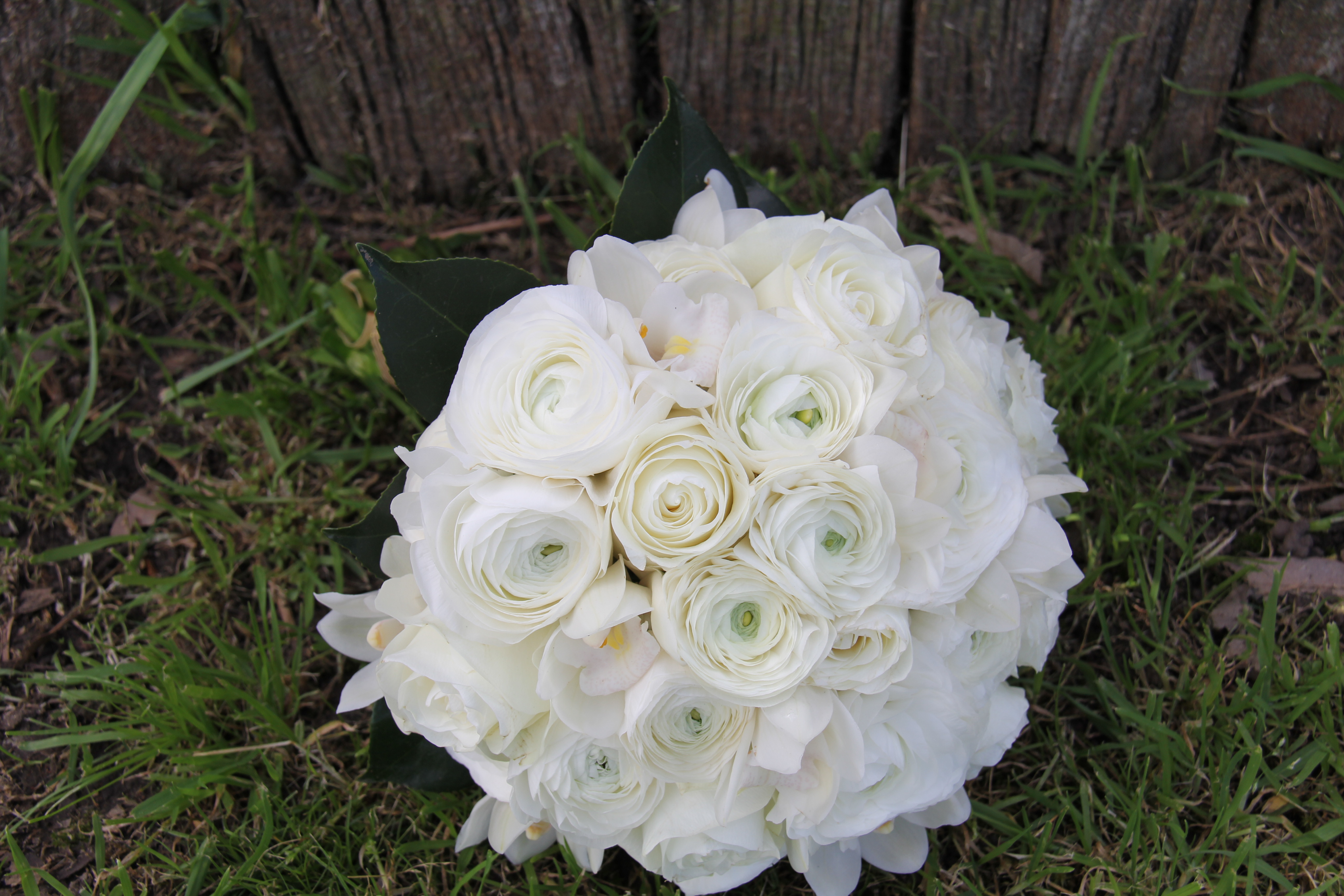 White posy with runnuculas, Roses an