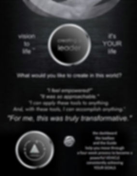 UPDATED VISIONtoLIFE one sheet back.jpg