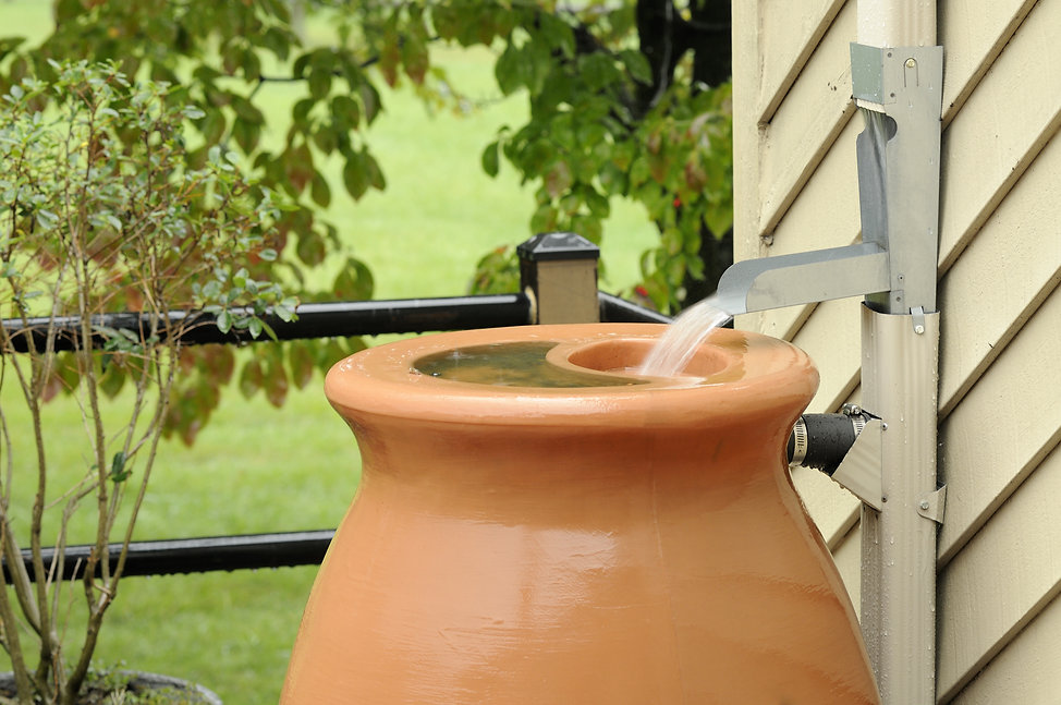 Rain Barrel being filled during rain sto